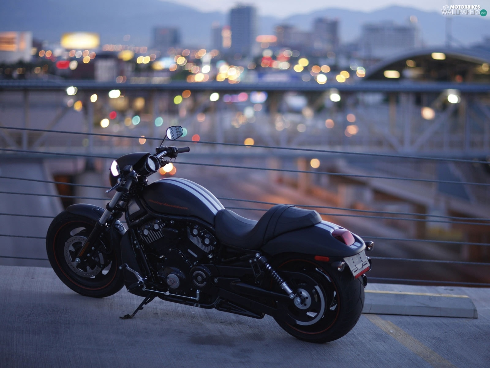 Belts Harley Davidson Night Rod Special White Motorbikes Wallpapers 1600x1200