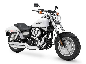Harley Davidson Fat Bob, White, Chopper